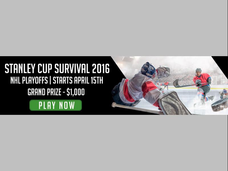 Banner Ad Hockey Design - Print branding at Bare Bones Marketing in Oakville, Ontario.